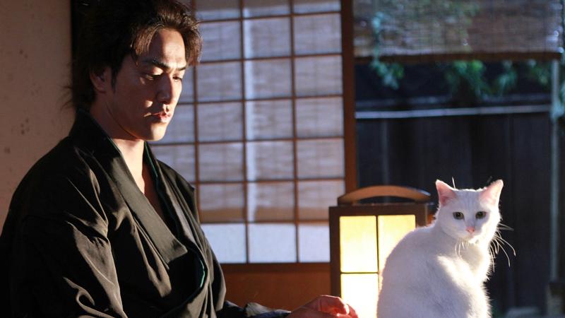 猫侍 久太郎と玉之丞